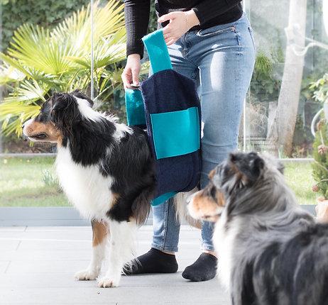Hundehandtuch aus Bio-Baumwolle