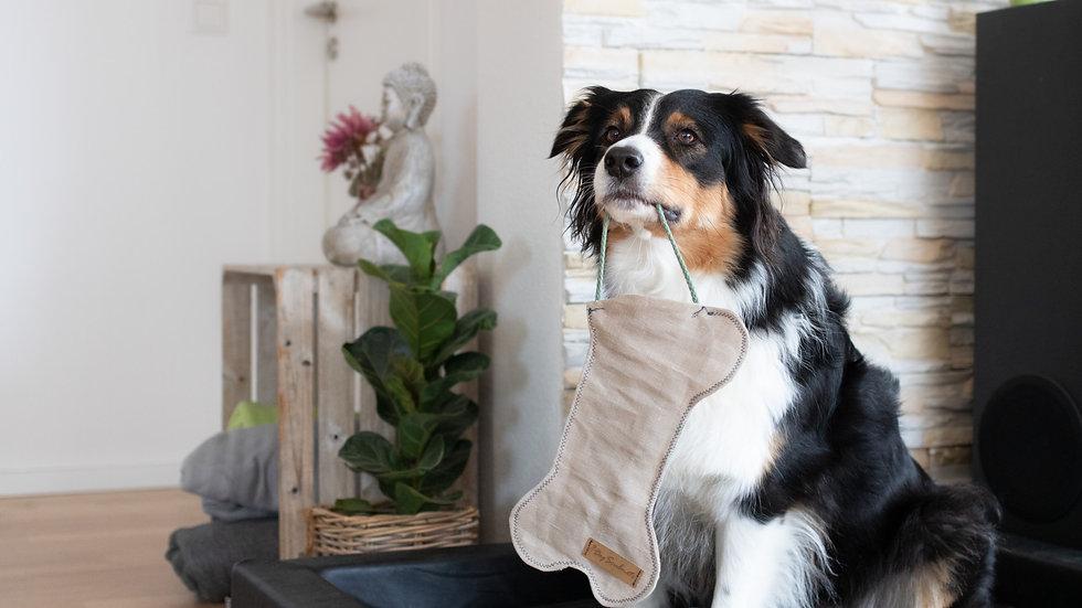 Weihnachtssocken für Hunde (inkl. Spende)