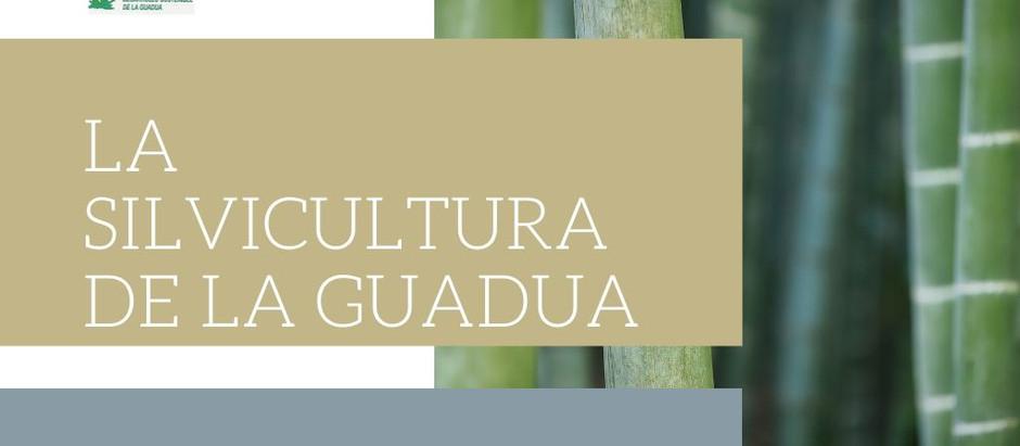 Silvicultura de la guadua Ing, Francisco Castaño