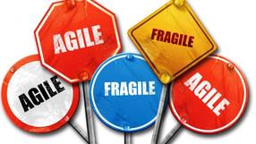 Agile – or FrAgile ?