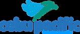 Cebu-Pacific-Logo-2017.png