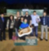 2019 Au Revoir Stakes.jpg