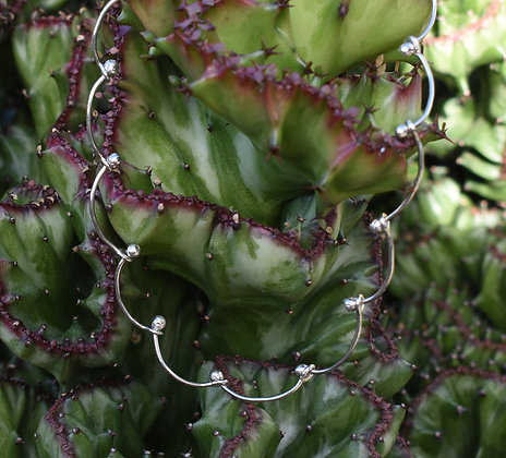 Seed Silver Necklace