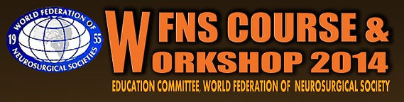 WFNS2014_report.jpg