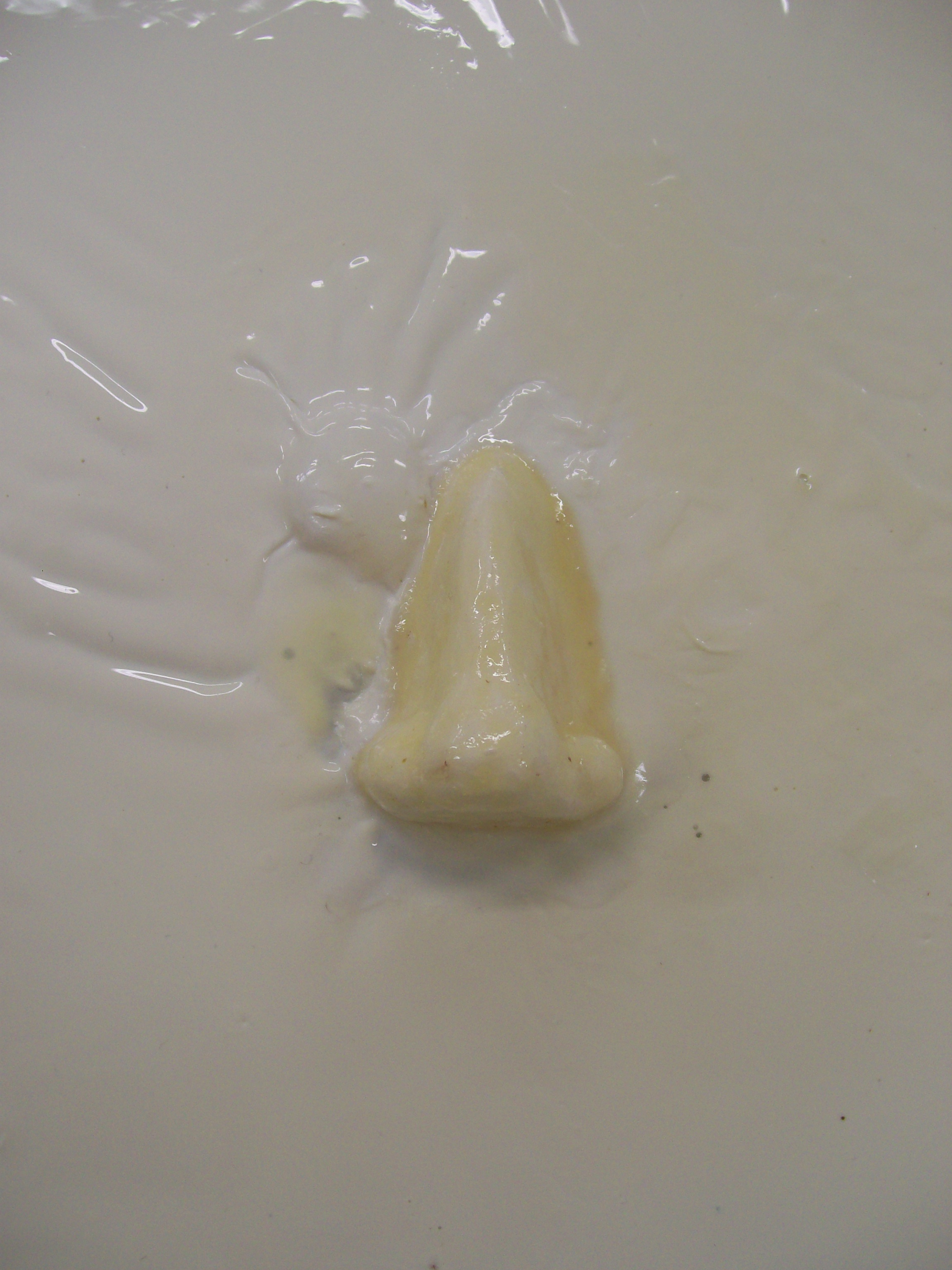 Maquette (Latex Nose), 2010