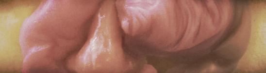 Maquette (Nose Job), 2010