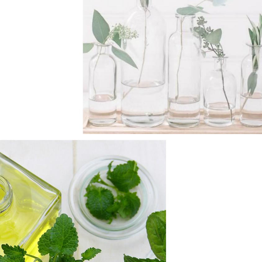 Oficina de Perfumes Terapêuticos e Botânicos