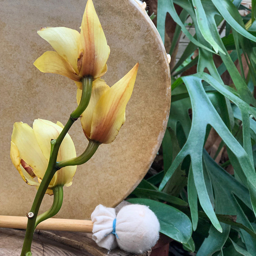 Jornada Flores e Tambores