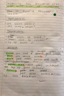 Sophia's fabulous instructions!