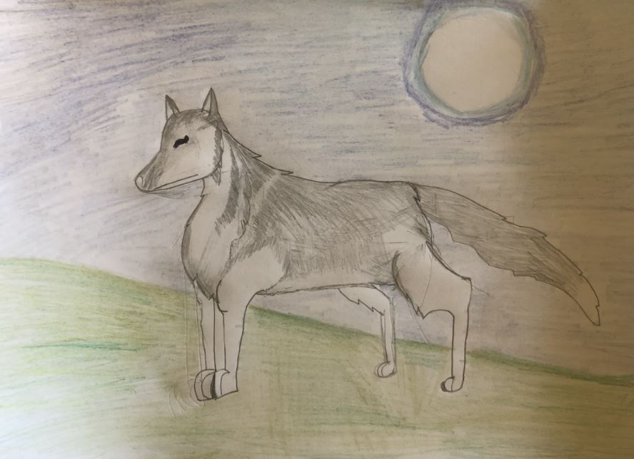 Lara's amazing wolf drawing!