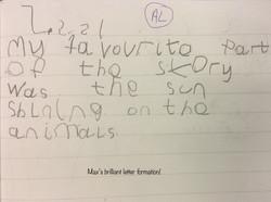Max's brilliant writing!