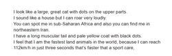 Salim's brilliant riddle!