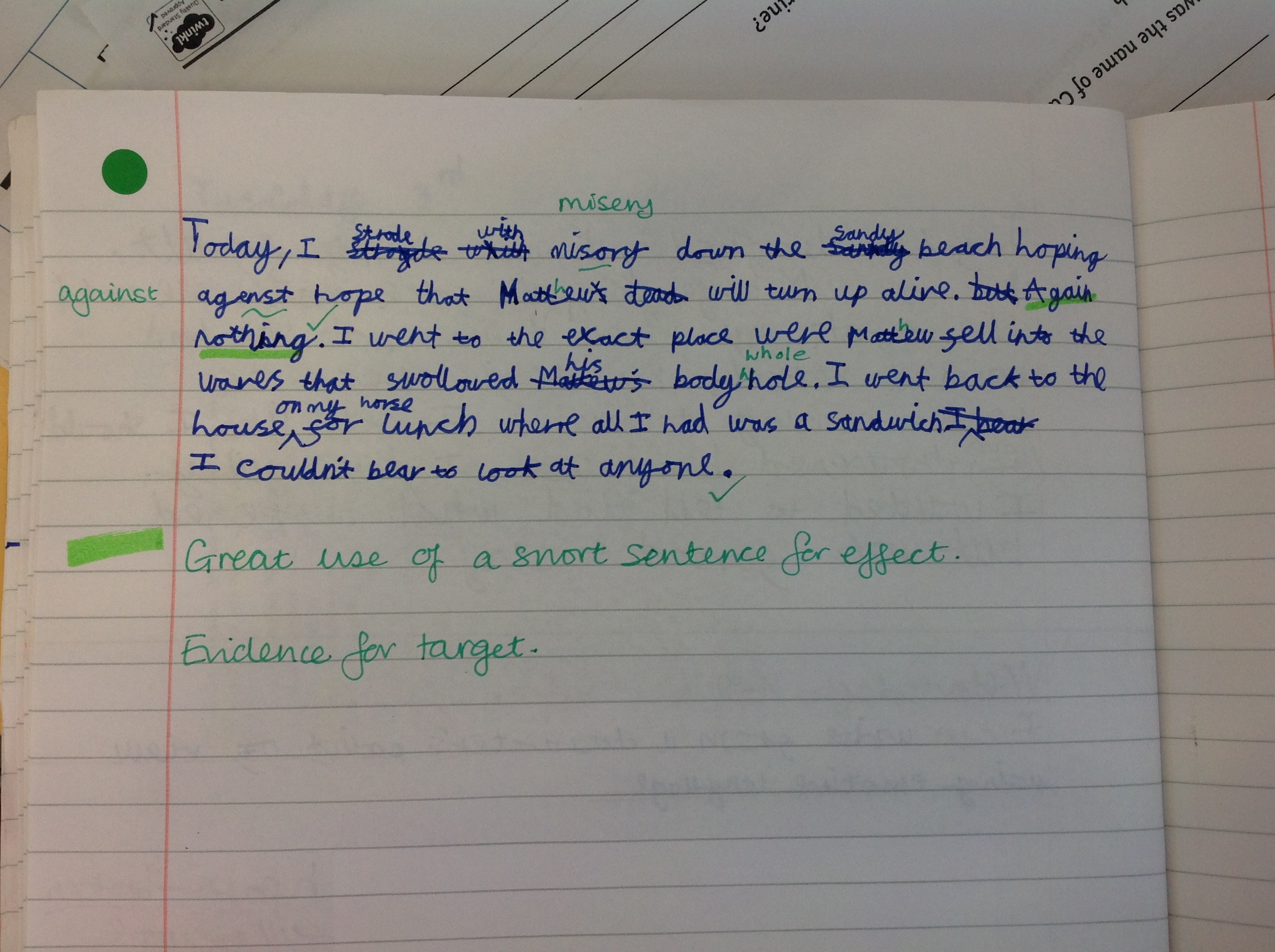 Nivetha's fabulous writing!