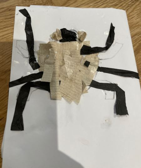 Zack's fantastic insect collage!