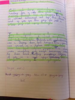 Taylah's wonderful writing!