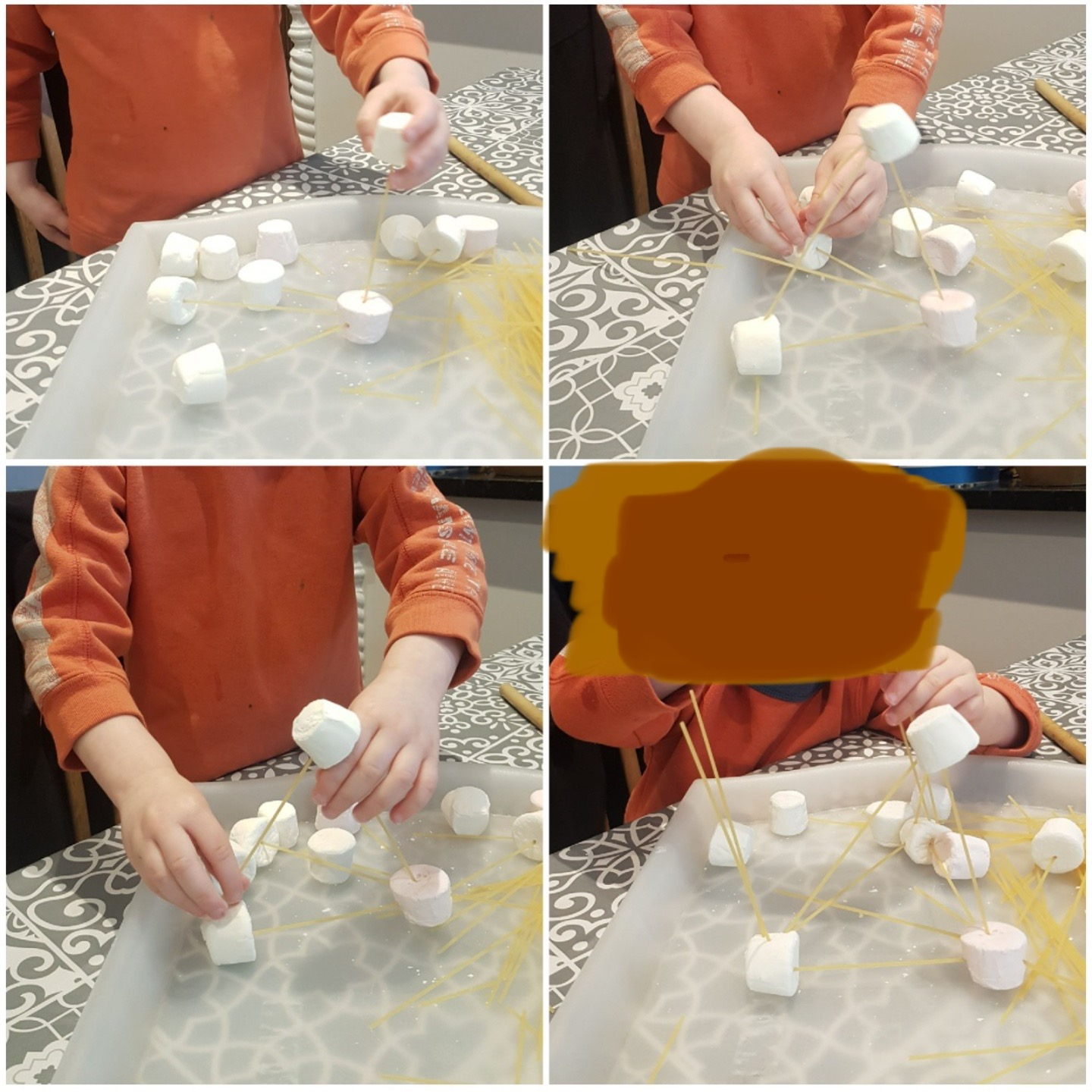 Henry's amazing Science investigation!