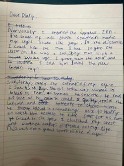 Liam's brillliant diary entry!