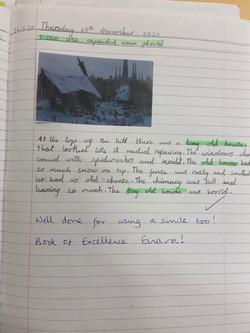 Einara's wonderful writing!