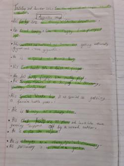 Michaela's excellent writing!