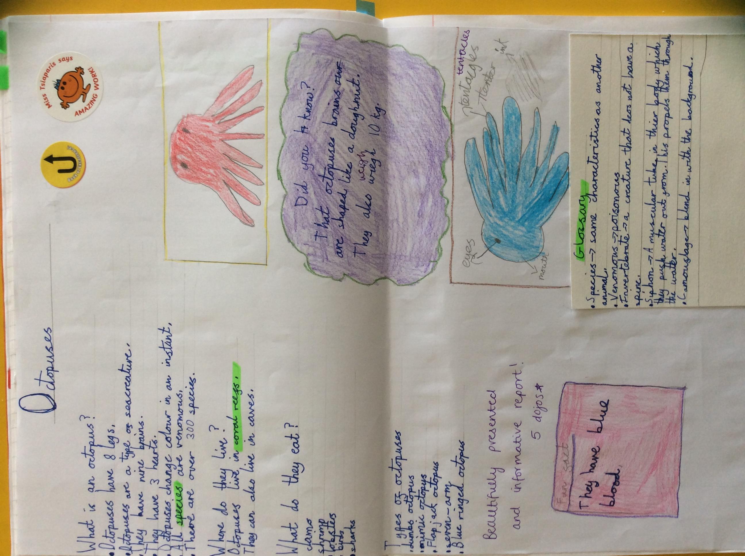 Bethan's fantatstic report!