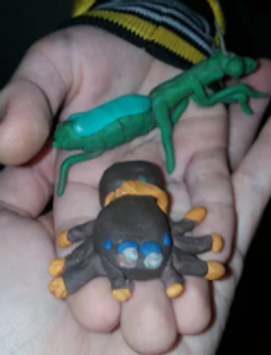 Oleksandr's wonderful insect models!