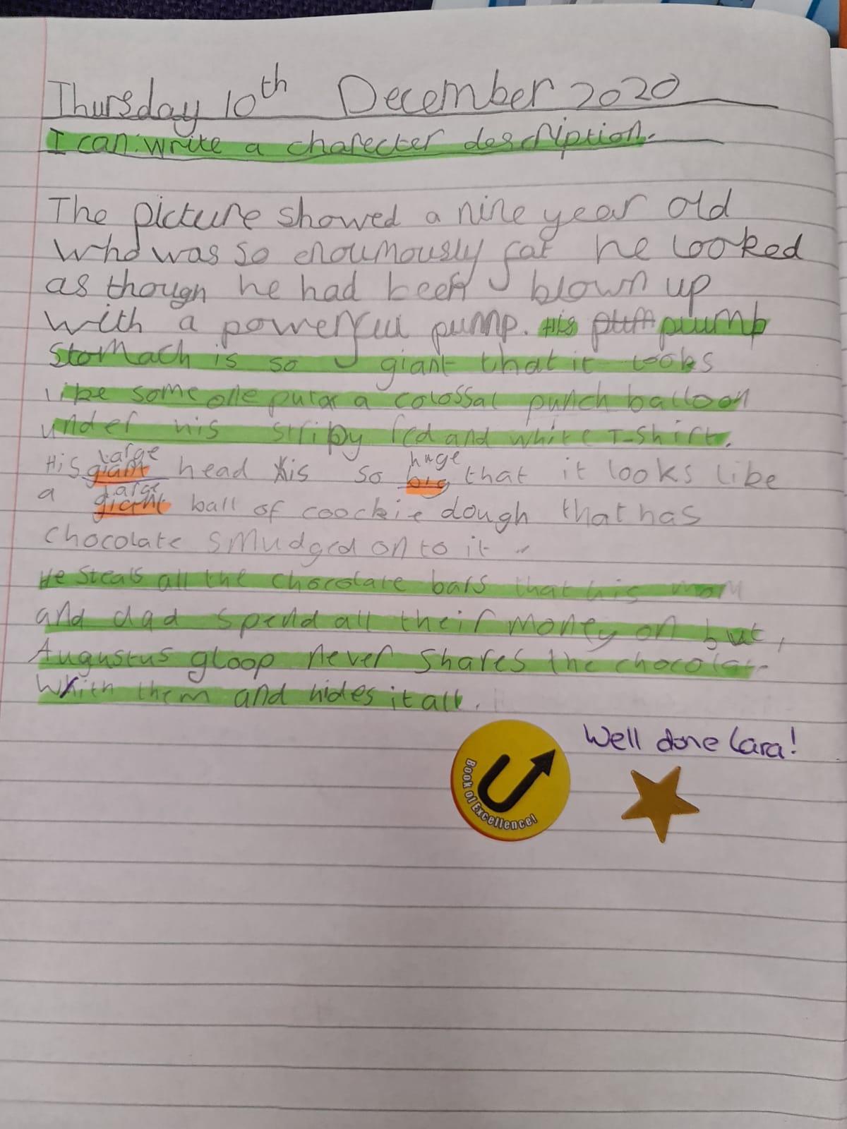 Lara's fantastic writing!