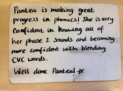 Pantea's brilliant progress!
