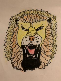Darcey's incredible lion drawing!