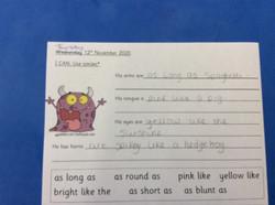Riyaad's excellent sentences!