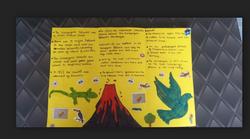 Faik's amazing Galapogas leaflet!