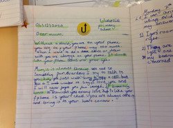Emily's excellent writing!