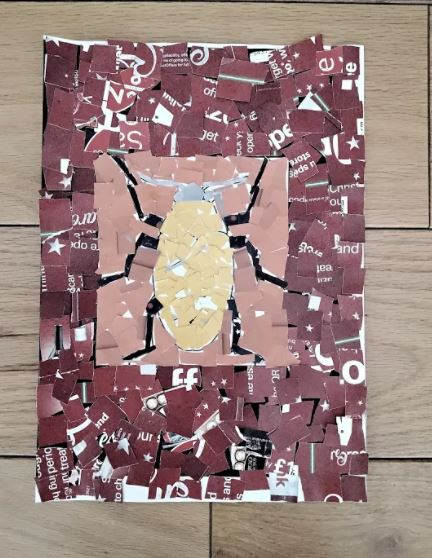 Miruna's wonderful insect collage!