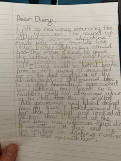 Leonard's fantastic diary entry!