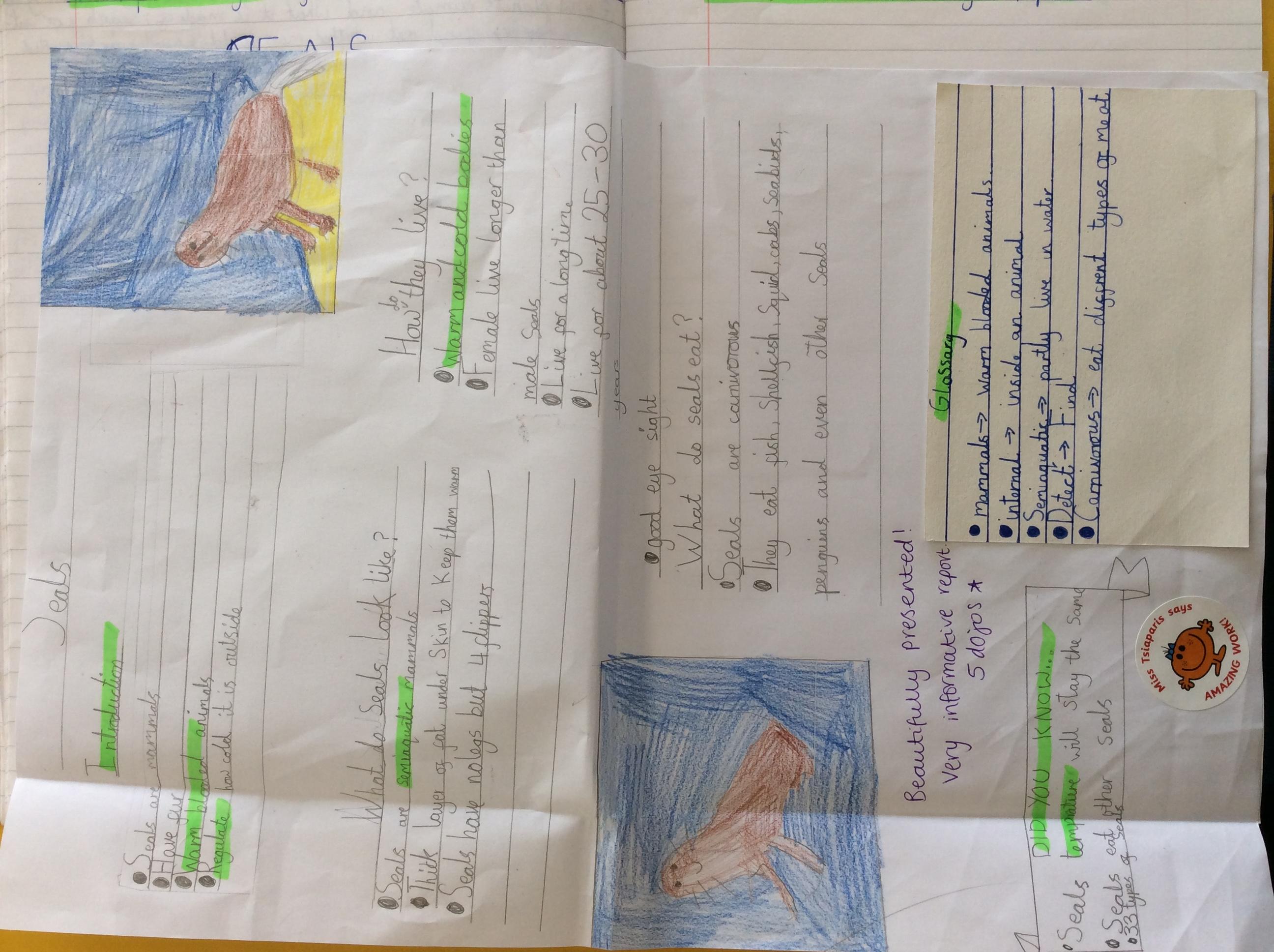 Kanon's fantastic report!