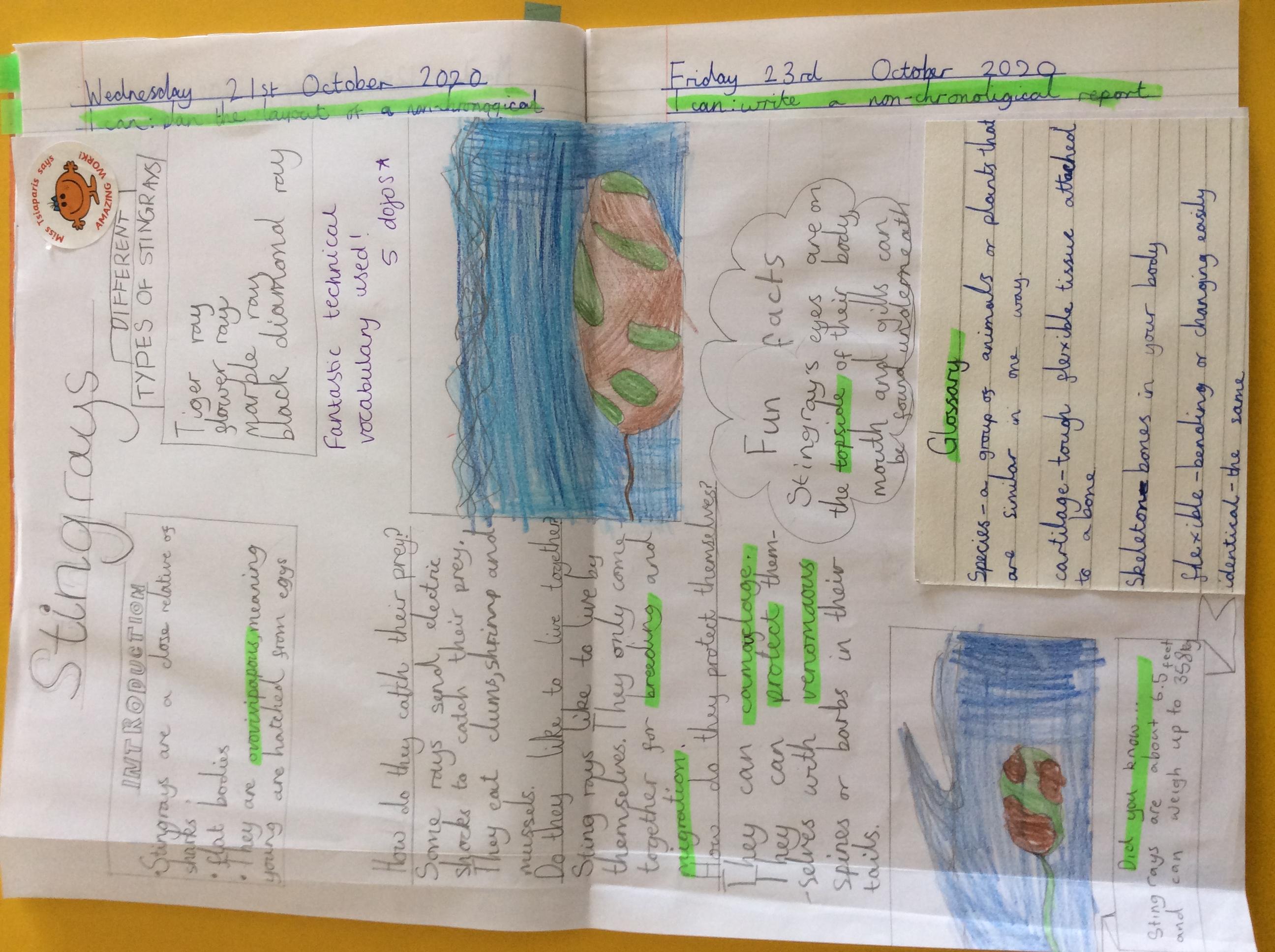Alisha's excellent report!