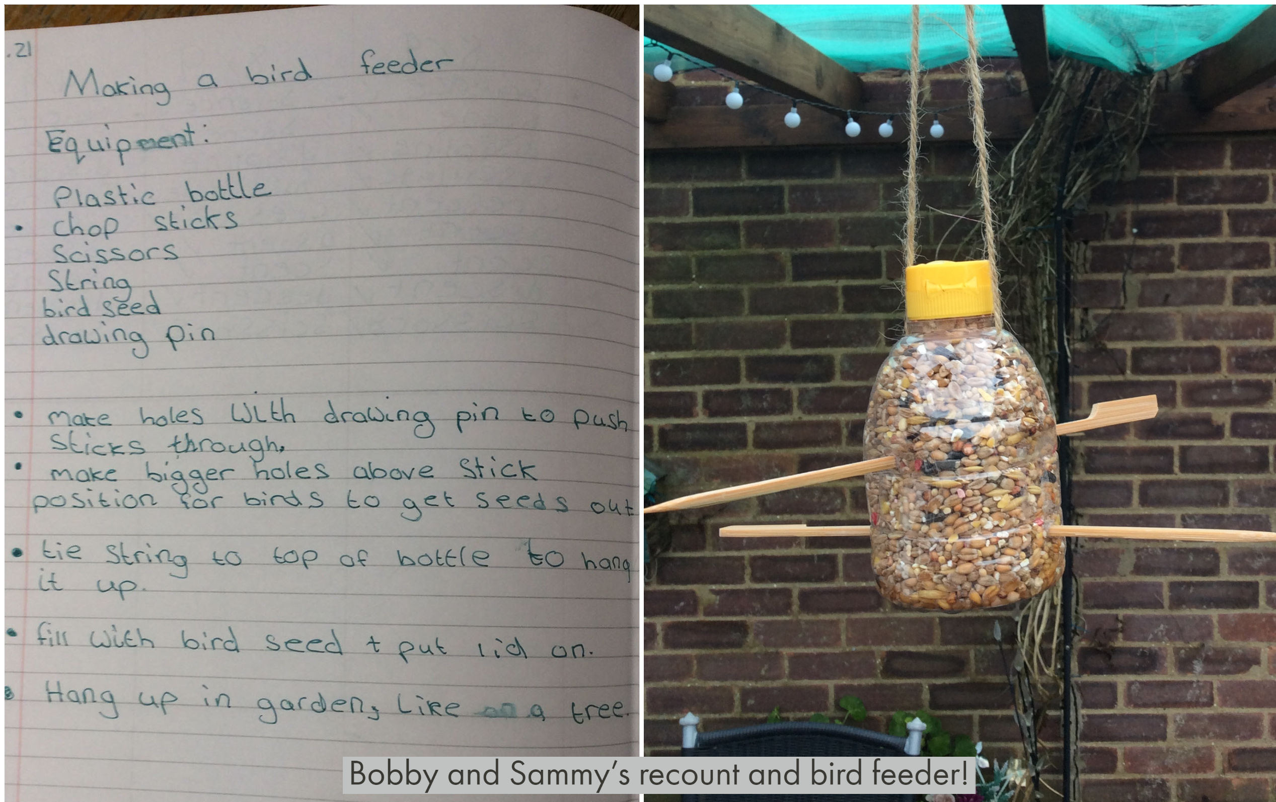 Bobby and Sammy's amazing bird feeder!