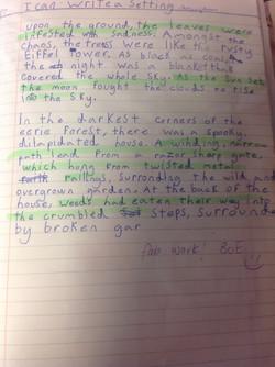 Beau's brilliant writing!