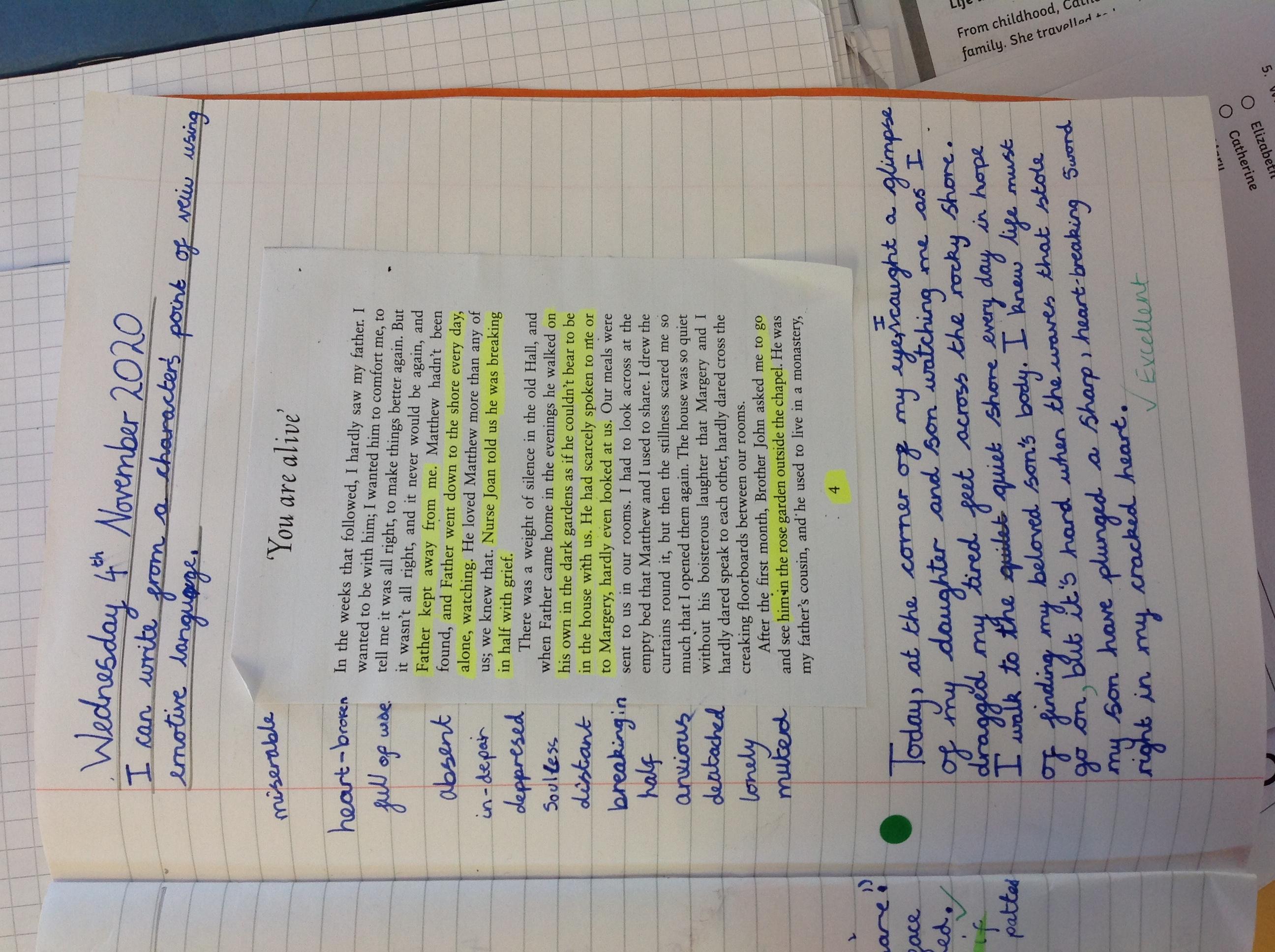 Neela's wonderful writing!