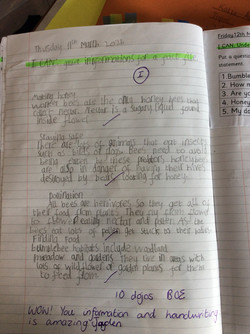 Jayden's amazing writing!