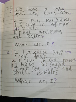 Ben's brilliant writing!