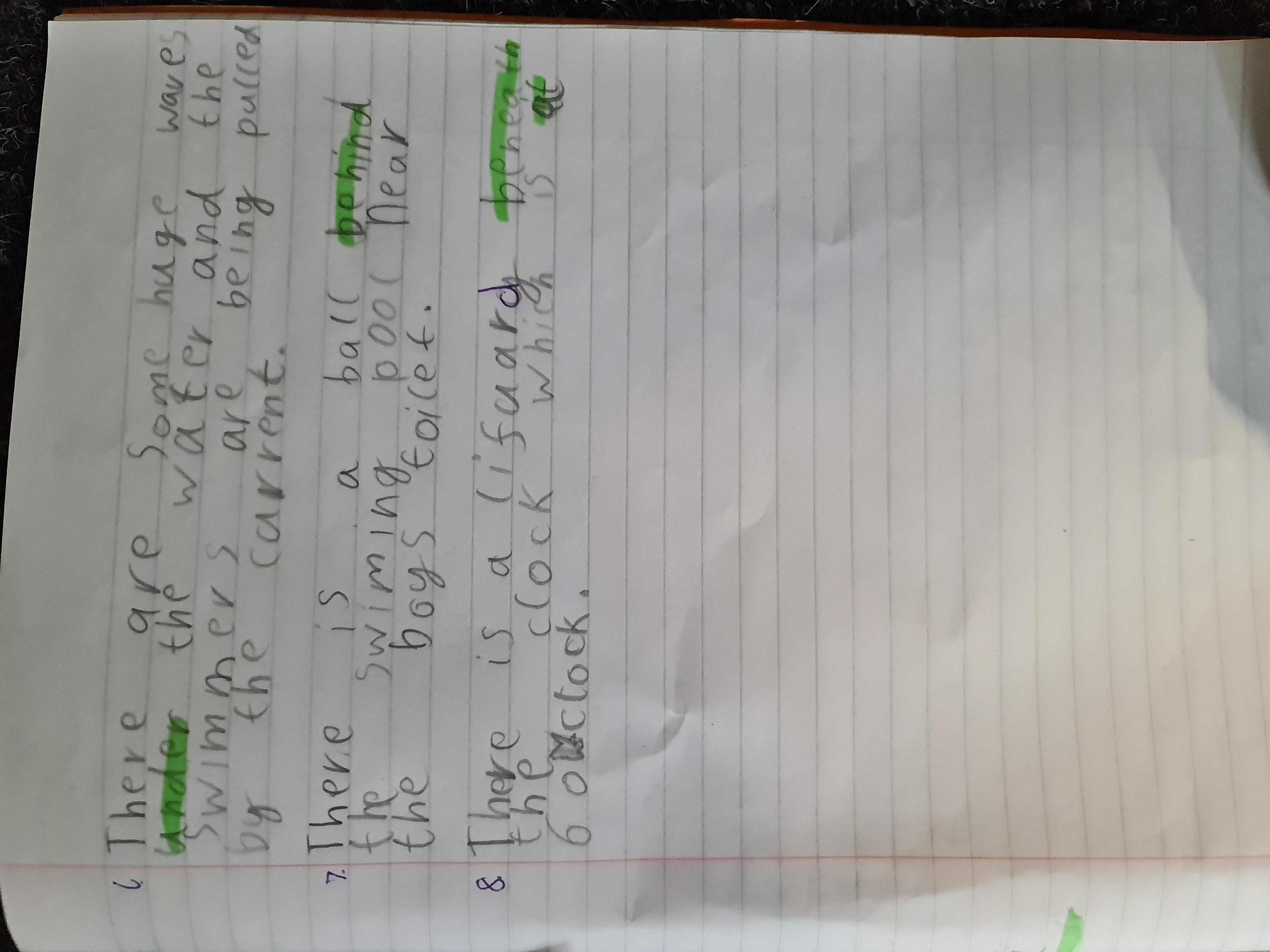 Michaela's wonderful writing!