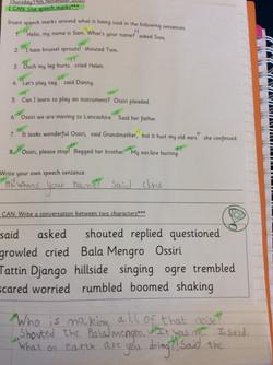 Joshua's brilliant literacy!
