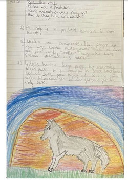 Amy's amazing information text!