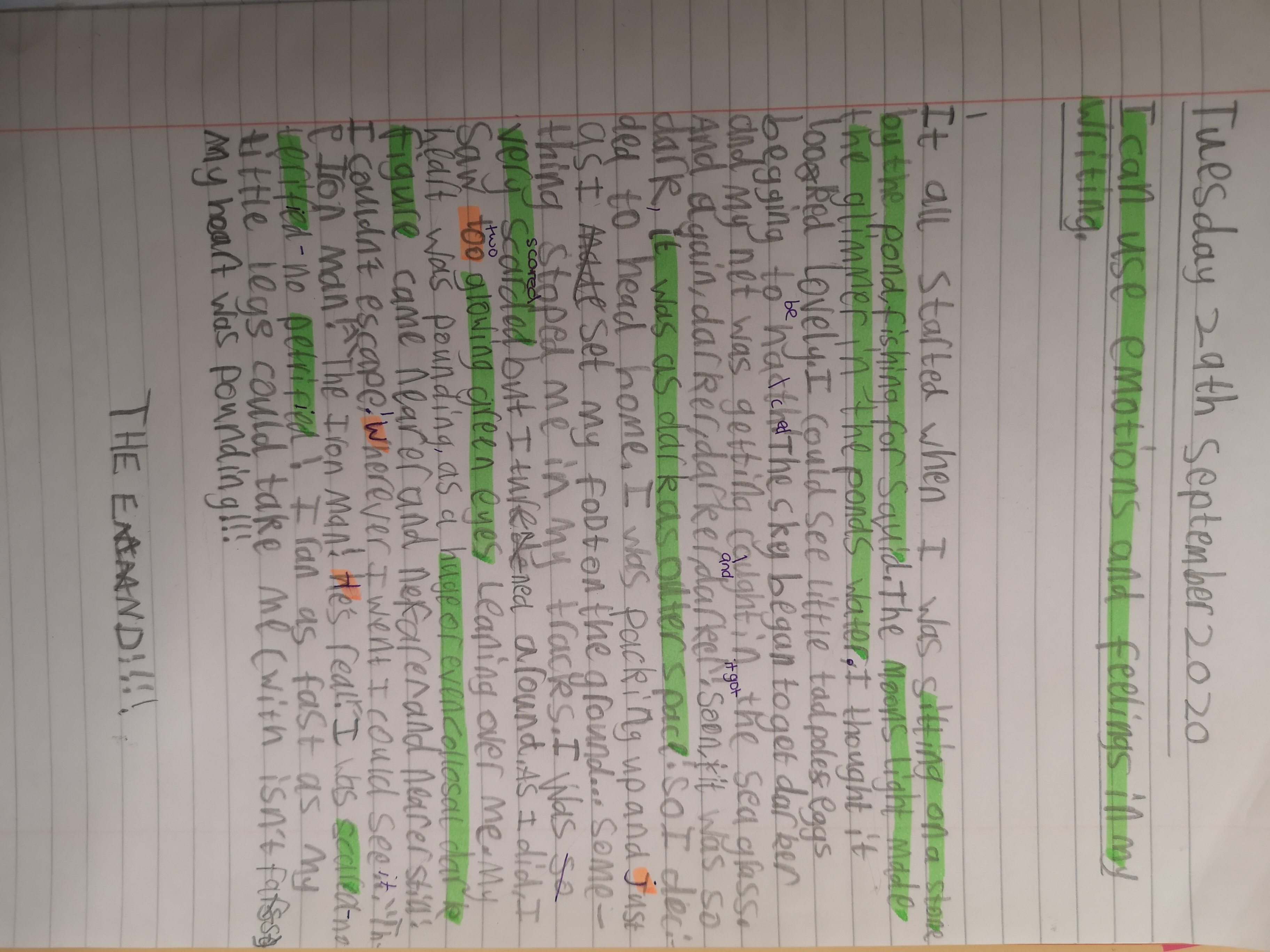 Darcey - great writing!