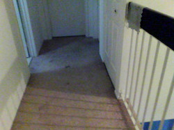 Naked eye carpet 2nd floor hallway