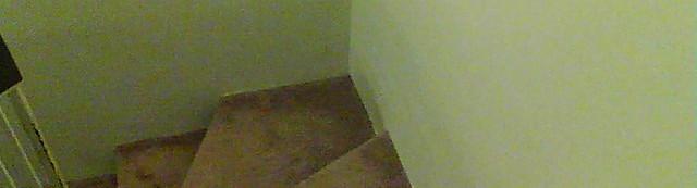 4 carpet stairs.jpg