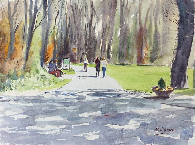 'Cabinteely Park Spring Sun'
