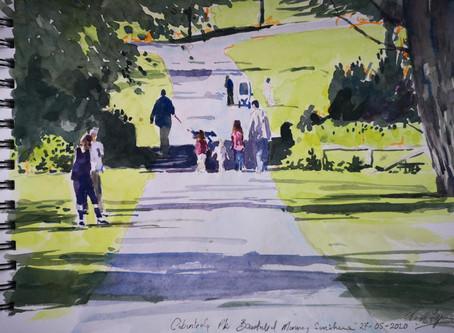 Cabinteely Park in Sunshine