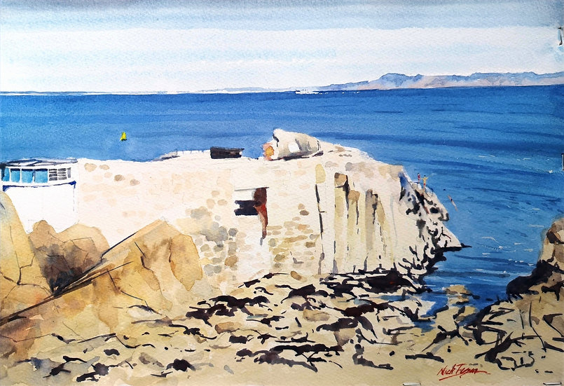 'Forty Foot' Sandycove