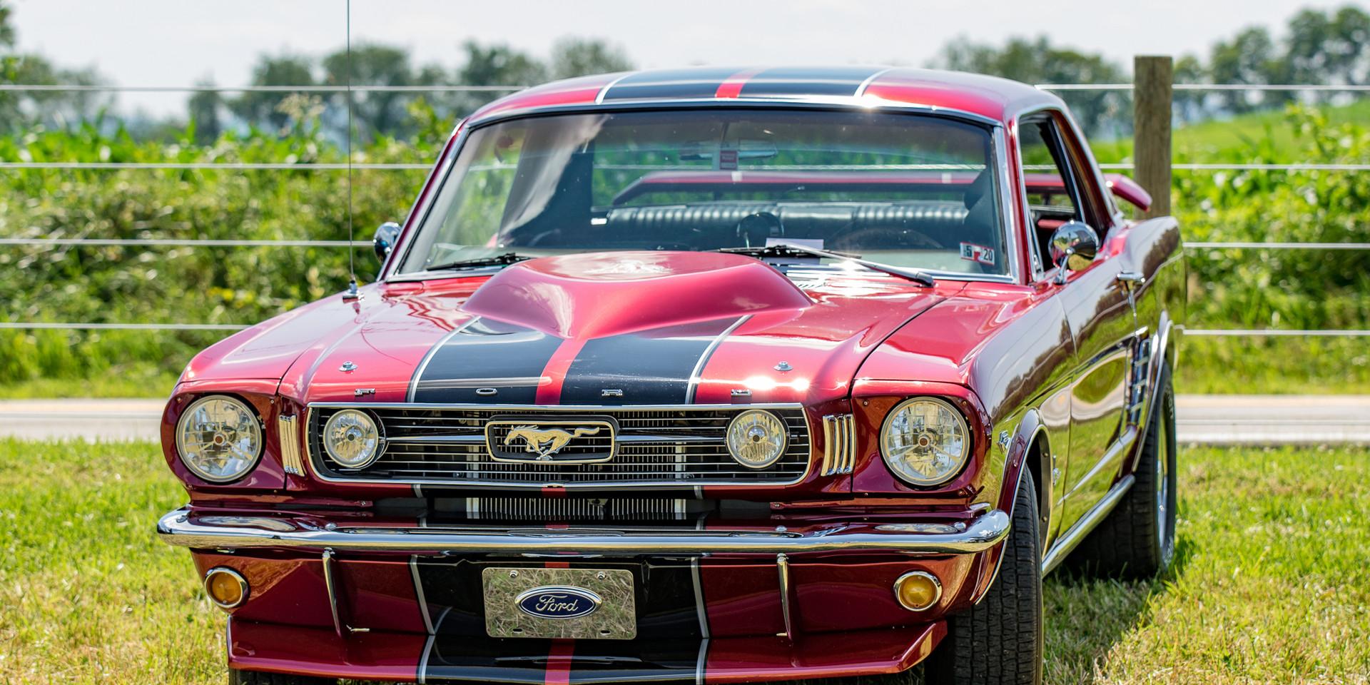 Car Show-5.jpg